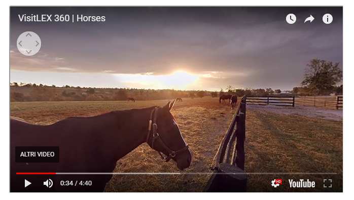 Il video 360 di VisitLEX Horses
