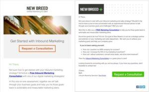 Le email di New Breed: versione testuale e grafica a confronto