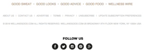 Il footer di Well+Good.