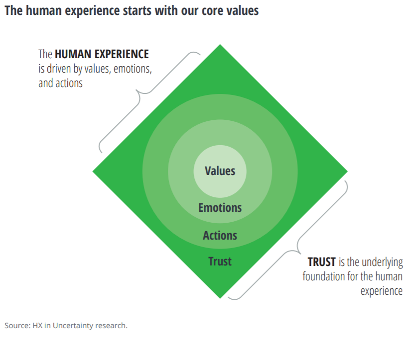 the human experience is drive by values