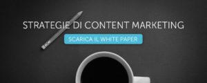 White paper Content Marketing